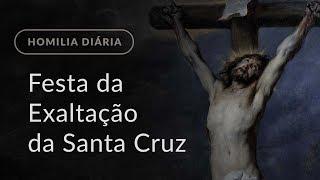 Festa da Exaltação da Santa Cruz (Homilia Diária.952)