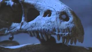 Динозавры   All about Dinosaurs BBC Documentary Film