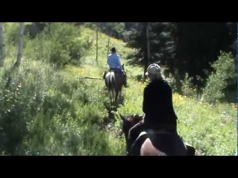 Horse Riding With Dry Ridge Outfitters Idaho. Climbing The Tin Cup With Quinn