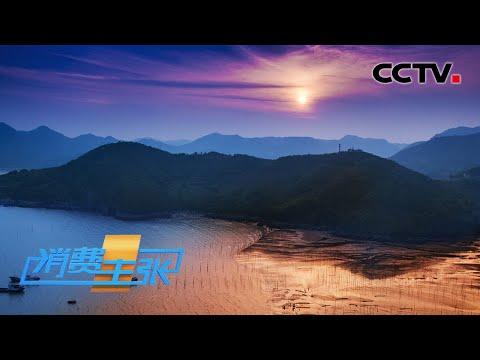 陸綜-中國夜市全攻略