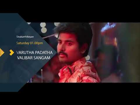 Sivakarthikeyan special shows television broadcast top TV channel