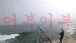 """#바다#낚시#전유동 """"생태계를 이해하는 방법은…"""