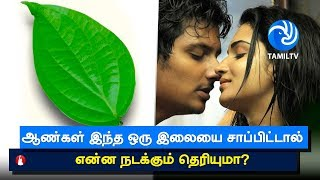 5 health benefits of chewing paan or betel leaves nobody told you about . Tamil TV