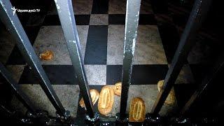 Հաց ԱԺ ճաղավանդակից այն կողմ  լուռ ակցիա ի հիշատակ «Հաց բերողի»