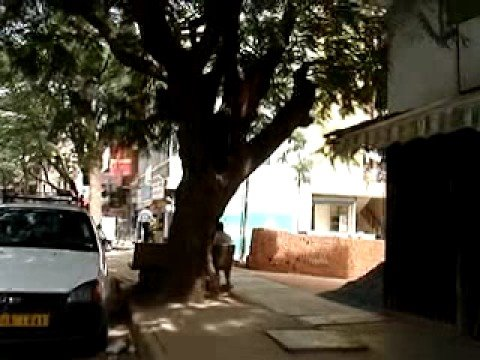 Walk to Work in Bangalore, India