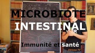 Les intestins: nos bactéries nous gouvernent !