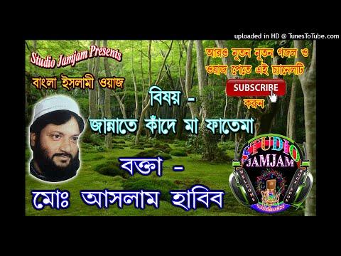 বাংলা ওয়াজ Jannate Kande Ma Fatema Vol 1 মোঃ আসলাম হাবিব সাহেব