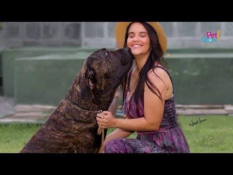 TV Pet Show | A origem do Fila Brasileiro | 2º Bloco 01.06.19