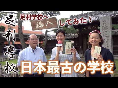 日本最古の学校!足利学校 その歴史を分かりやすく教えていただきました。