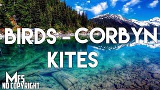 Birds  – Corbyn kites ( high quality Audio ) [ MFS No Copyright Music ]