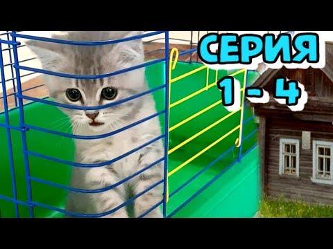 Спасение котенка. Самая трогательная история кота Макса. Сборник 1-4
