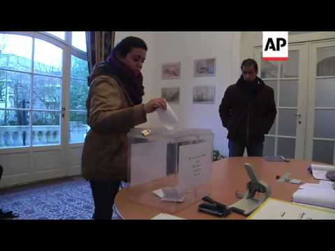 Expat Egyptians begin voting in referendum on new consitution