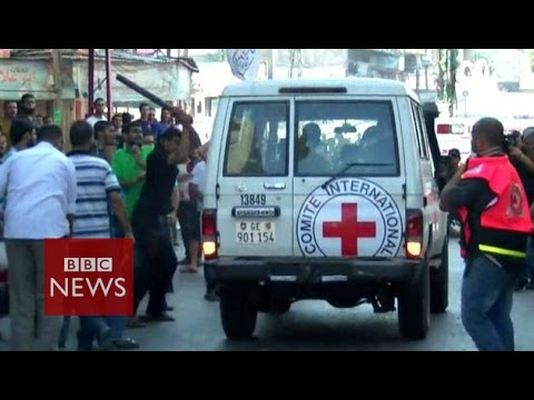 Gaza civilians attack Red Cross - BBC News