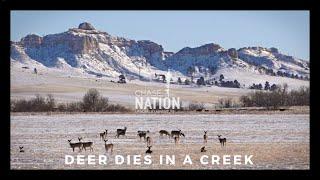 Deer Dies in the Creek - Somewhere in Nebraska (OFFICIAL TRAILER)