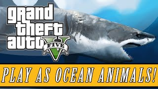 GTA 5: PS4 & Xbox One | Become a Shark, Dolphin, Stingray & More! (GTA 5 Easter Eggs!)
