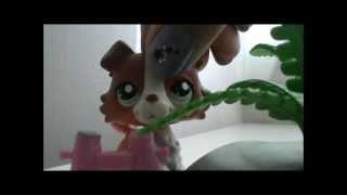 Littlest Pet Shop: A School Girl's Life (Episode #5- Mistakes)