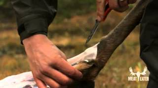 Field Dressing Tips with Steven Rinella - MeatEater