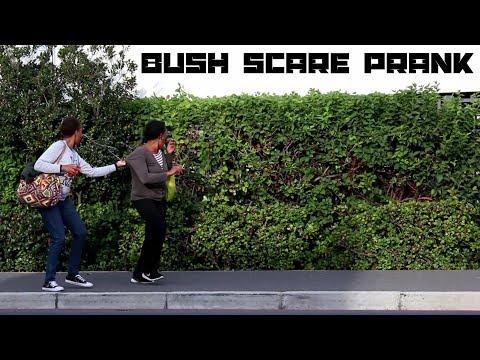 Scaring People In Bush Prank!