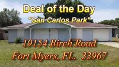 Deal of Day - 19154 Birch Road, San Carlos Park, Fort Myers, FL  33967
