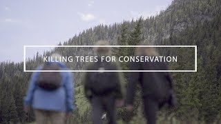 Killing trees for conservation