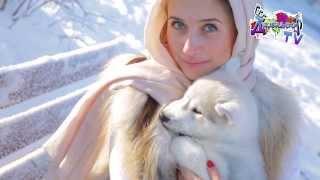 Курсы Фотографии. Педагог Орнелла Зурабова. Выездная съемка с Хаски(, 2014-01-30T18:06:44.000Z)