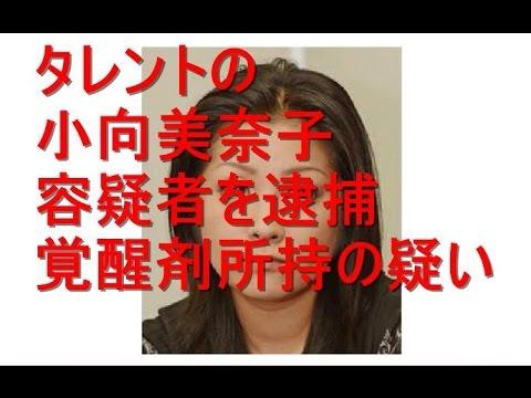 タレントの小向美奈子容疑者を逮捕 覚醒剤所持の疑い