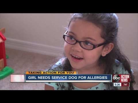 Little 6y/o gir need service dog because of severe allergies