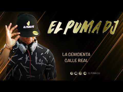El Puma Dj