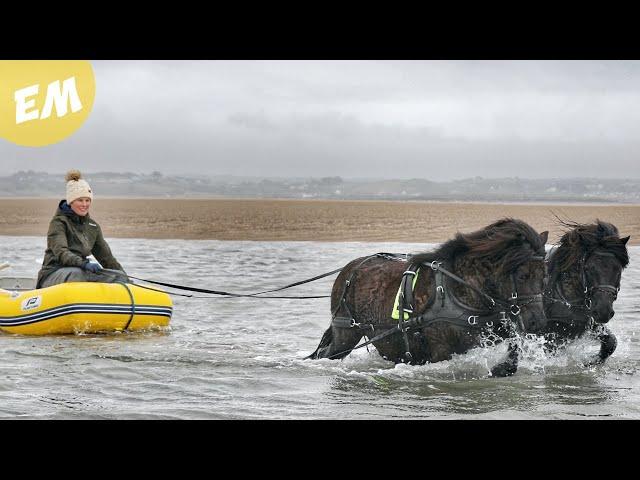 Black Stallions go Boating