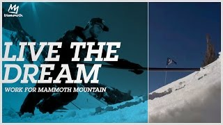 Live the dream - work for Mammoth Mountain!