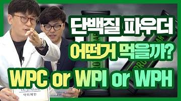 단백질 파우더 어떤거 먹을까? WPC, WPI, WPH.