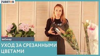 Основы флористики. Уход за цветами - вебинар Ольги Шаровой и компании 7ЦВЕТОВ
