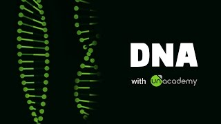 DNA: Introduction, length, structure, Double Helix Model