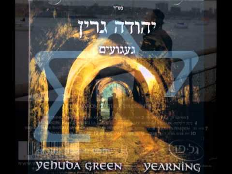 Yehuda Green - Days are coming