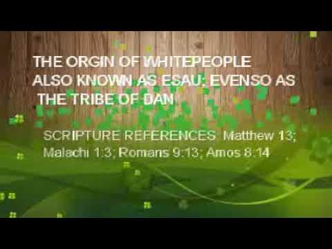 The Orgin of Whitepeople: Where the whiteman come from; known as Esau and the Tribe of Dan