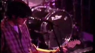 Gin blossoms - 29