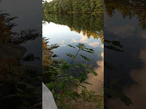 Saco River Hideaway Campground - CampMaine