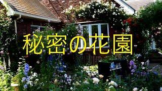 埼玉県熊谷市 Le Jardin Secret《秘密の花園》のオープンガーデン 一週間一寸 日が空いてしまいましたがリベンジしてきました。