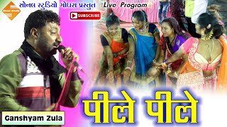 Part 9 || Pile Pile O More Raja (पीले पीले ओ मोरे राजा) || Ganshyam Zula || Live Dandiyaras || 2019