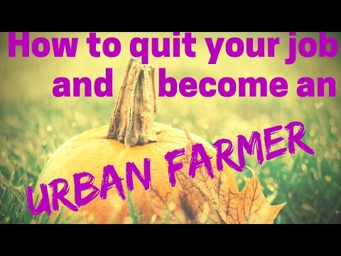 Urban Farming - How to make a living starting your own urban