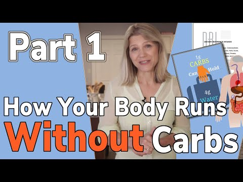 Are You Able To Survive Without Carbs