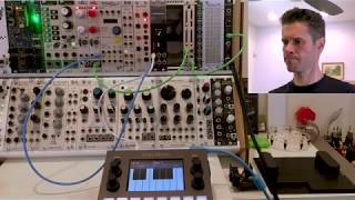 1010music blackbox: Sample and play CV and Gate #blackbox #eurorack