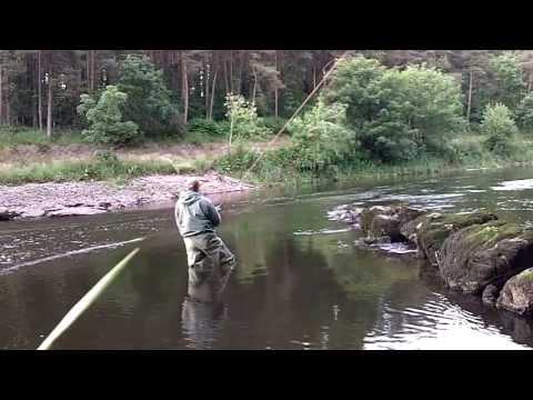 Salmon Fishing Ireland 2013 ( HD )