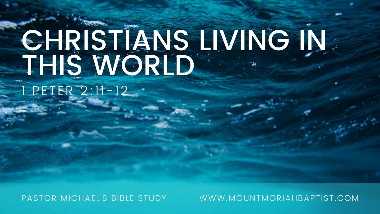 1 Peter 2:11-12 | Christians Living in this World | Dec 6, 2020 | Pastor Michael
