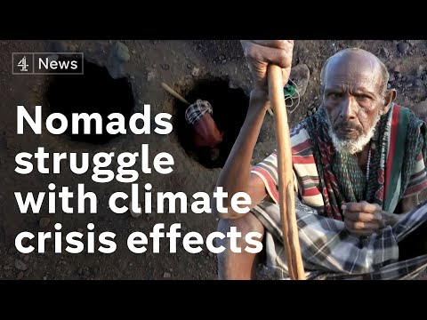 Ethiopian Nomads struggle for survival on the climate crisis frontline