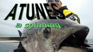 ATUNES A SPINNING 2013 DELTA GAME FISHING