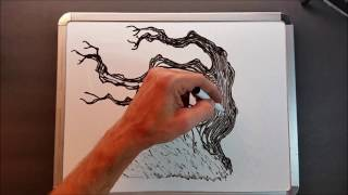 Dry Erase Whiteboard Art - How To Draw a Bonsai Tree - Mr Ed Draws