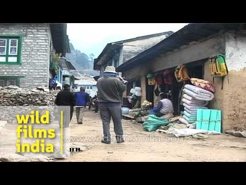 Nepali school children going to school in Nepal