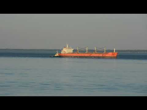 Bulk Carrier HTC Alfa  Part 1