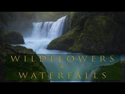 Photographing Wildflowers and Waterfalls - 2018 workshop behind the scenes